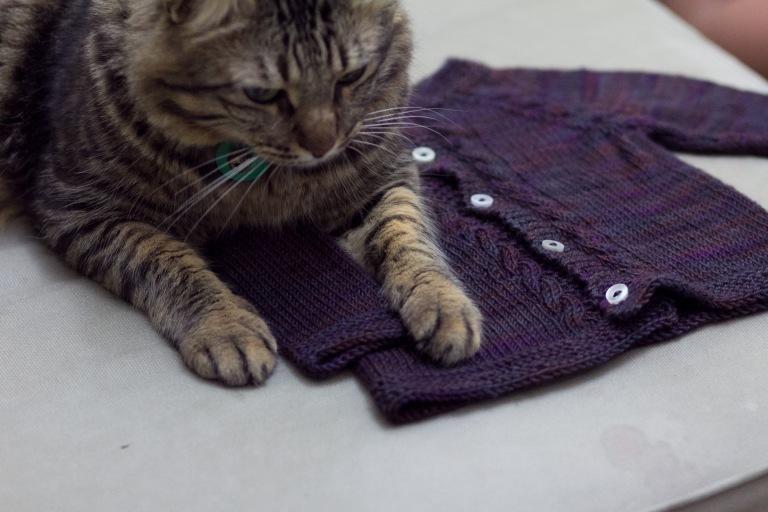 wool lovin kitty