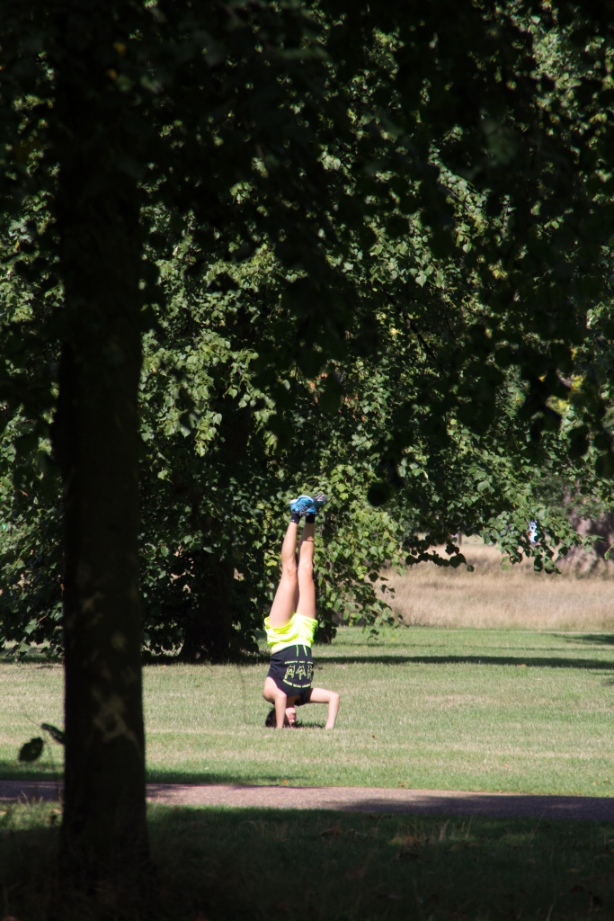 upside down at hyde park